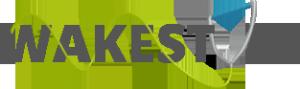 logostyle